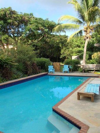 La Finca Vieques: pool