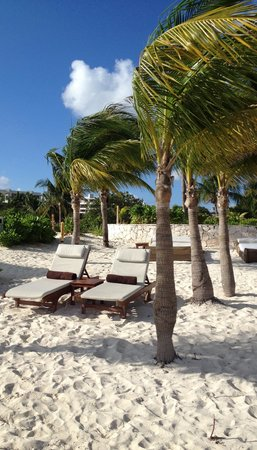 Excellence Playa Mujeres : Excellence club beach