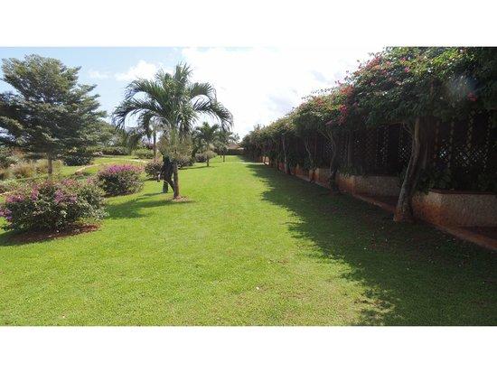 Diamonds La Gemma dell' Est: Garden in a front of hotel
