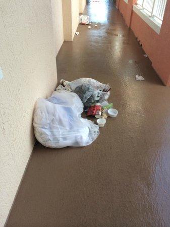 Marriott's Grande Vista: Trash scattered around