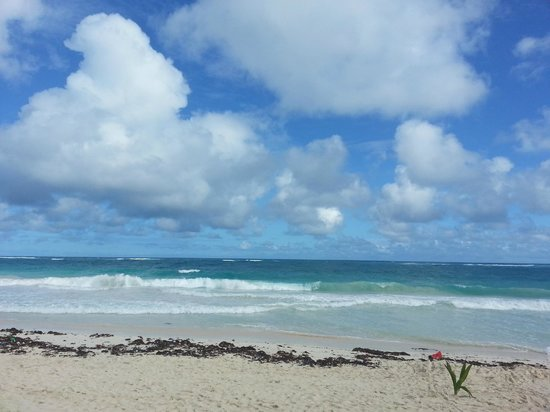 Xbalamque Cabanas Tulum: Beach view
