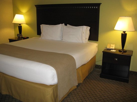 Holiday Inn Express Hotel & Suites Grand Rapids Airport: Holiday Inn Express Rapids Airport -- King Bed