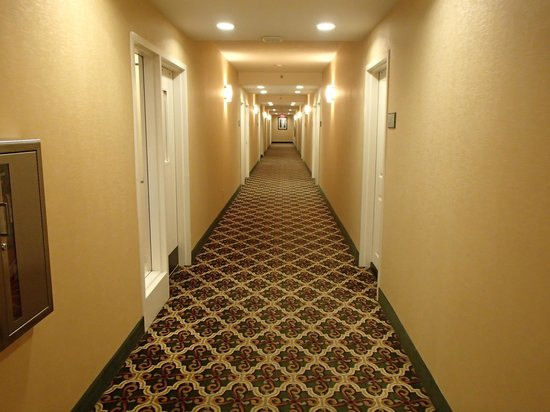 Hampton Inn & Suites Mobile/Downtown: Hallway