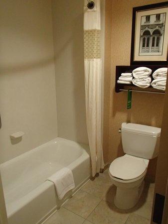 Hampton Inn & Suites Mobile/Downtown: Bathroom