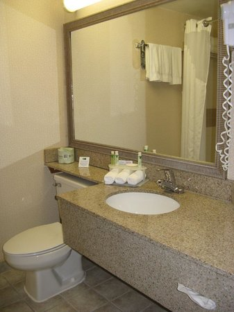 Holiday Inn Express Hotel & Suites Grand Rapids Airport : Holiday Inn Express Rapids Airport -- Bath
