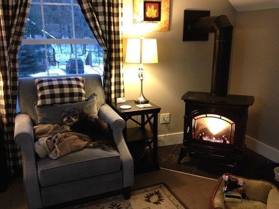 Montgomery Center, VT: My dog enjoying the cozy fireplace