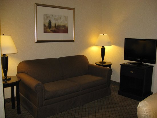 Holiday Inn Express Hotel & Suites Grand Rapids Airport: Holiday Inn Express Rapids Airport -- Sitting Area w/TV