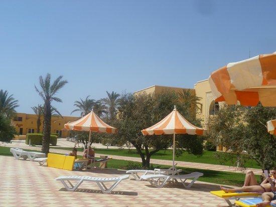 Nour Palace Resort : Территория
