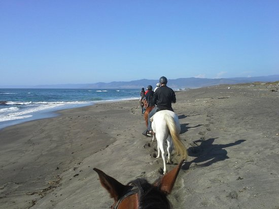 Ricochet Ridge Ranch: Riding - before helicopter scared the horses.