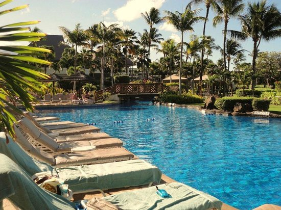 Sheraton Maui Resort & Spa : Pool Pic