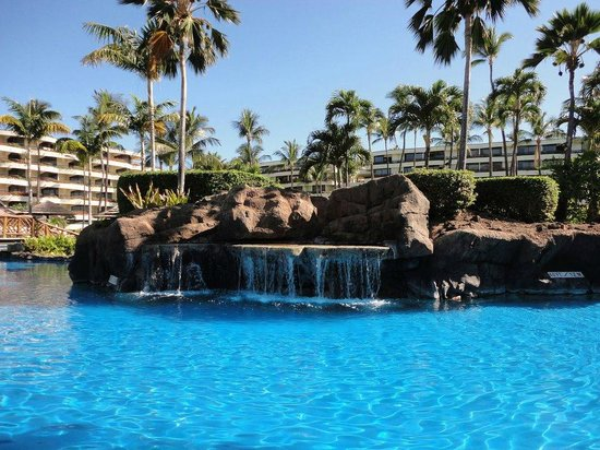 Sheraton Maui Resort & Spa : Another pool pic
