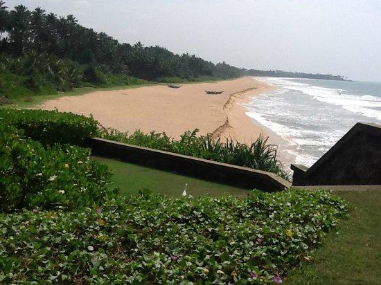 Saman Villas : View from the garden