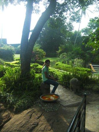 Earl's Regency : garden on the room floor
