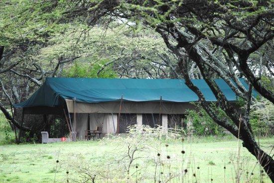 Alex Walker's Serian: our tent