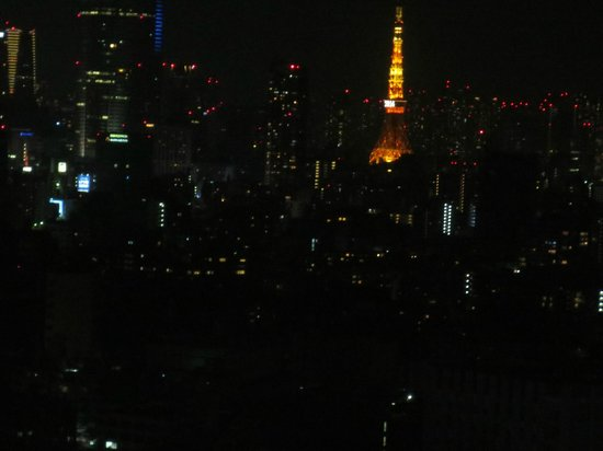 Cerulean Tower Tokyu Hotel : view from 27th floor