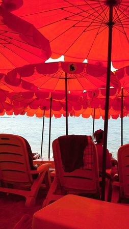 Rabbit Resort: Under the beach umbrellas