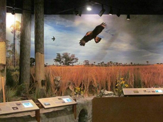 Osceola County Welcome Center and History Museum: Display