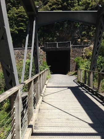 Hauraki Rail Trail - Day Rides : The beginning of the 1km tunnel going from Waikino to Paeroa