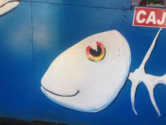 Mopri: fish on wall