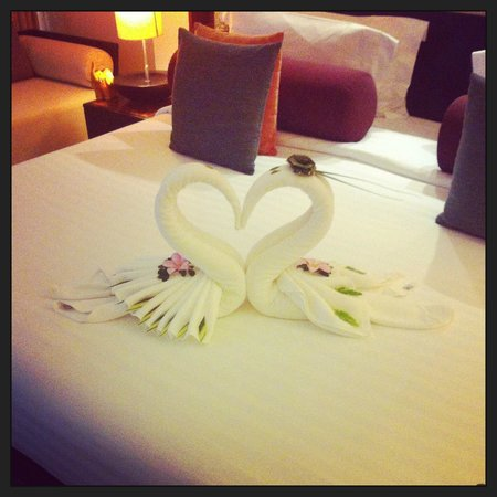 Mai Samui Resort & Spa : Beautiful honeymoon swans
