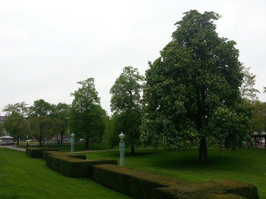 Rosengarten Mannheim: 10