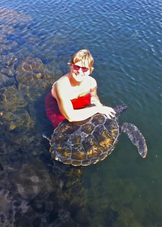Swimming with Turtles: Mandy tickling Turtles neck