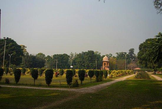 Rambagh Gardens: Garden