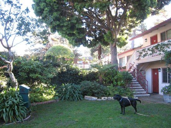 Svendsgaard's Inn : Garden area