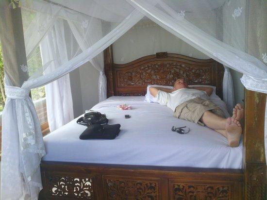 Karangsari Guest House: kamerzicht