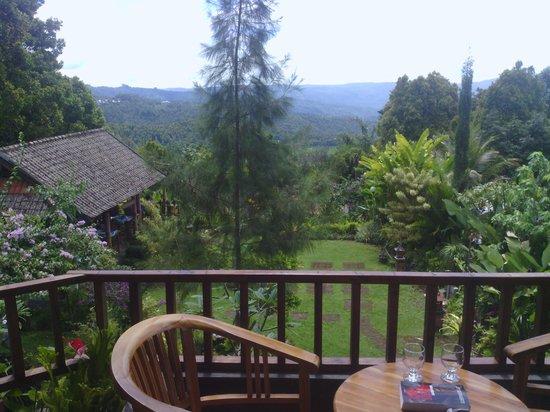 Karangsari Guest House: uitzicht