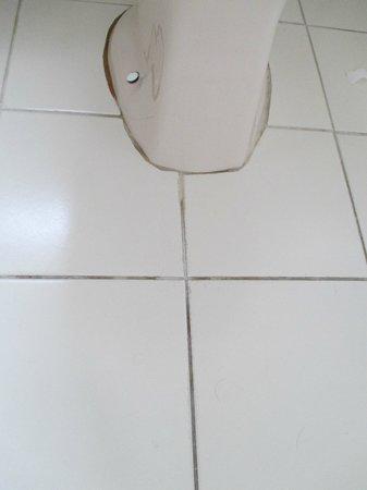 SilverOaks Resort Heritage: brown stuff around the base of the toilet