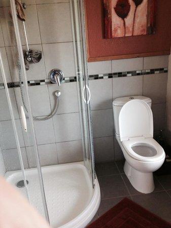 Ardgour Strawbale Bed & Breakfast: Bathroom