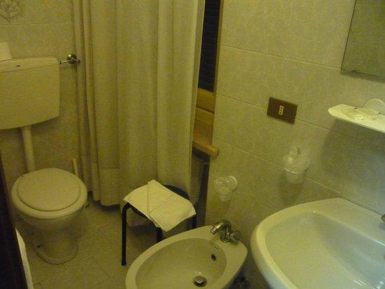Trentina: トイレ