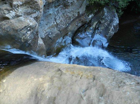 Cedar Falls Hiking Trail: Top of Cedar Falls