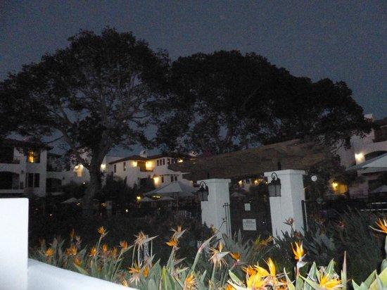 Omni La Costa Resort & Spa: Evening view