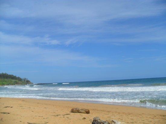 Kauai Coast Resort at the Beachboy : Calm Beach Waters Nearby