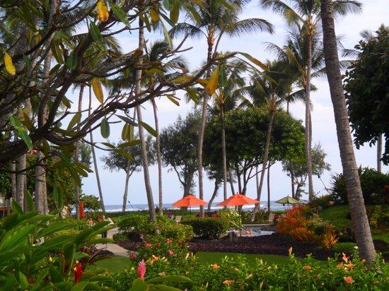 Kauai Coast Resort at the Beachboy : Beautiful Scenery on site
