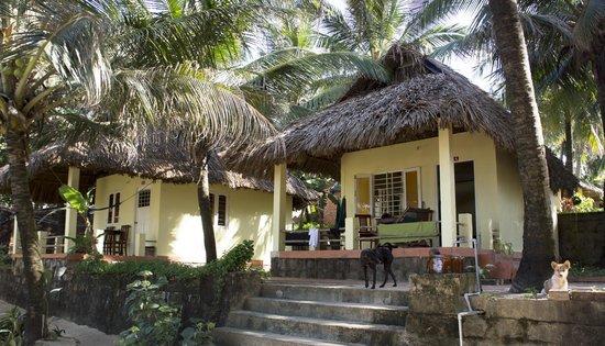 Viet Thanh Resort : Garden View 6 - HIgh Quality Pic