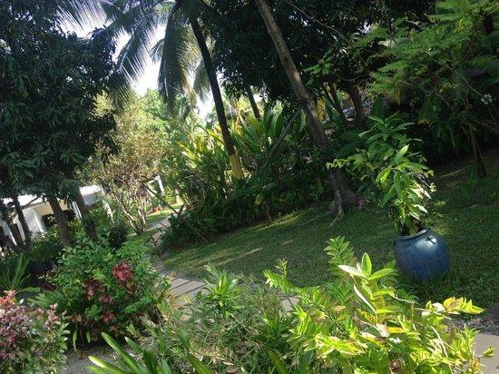 La Maison d'Angkor: garden