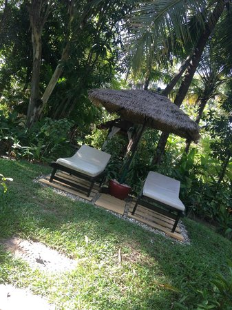 La Maison d'Angkor: sunbath chair by the pool