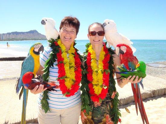 Outrigger Reef Waikiki Beach Resort: bird man outside hotel