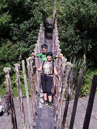 Bushaven: pakihi trail