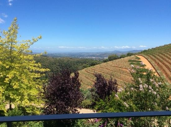 Tokara Restaurant: view from the terrace