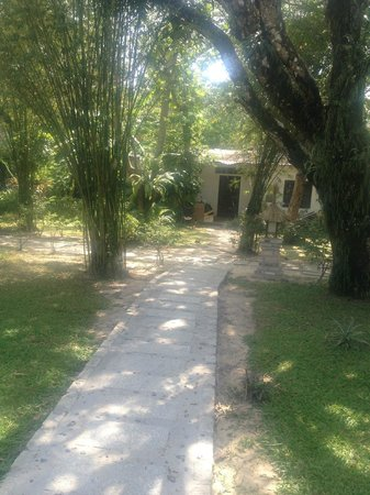 Mai House Resort: Path from the villa