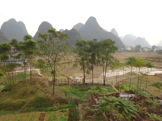Yangshuo Tea Cozy: Bear in mind that this is December!