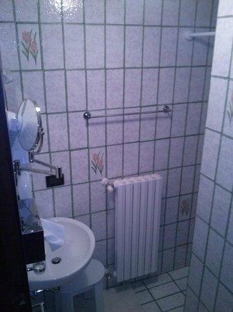 Hotel Rosa : bagno