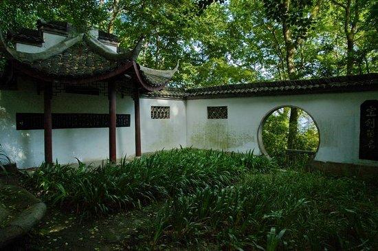 Moganshan Villas : A small garden