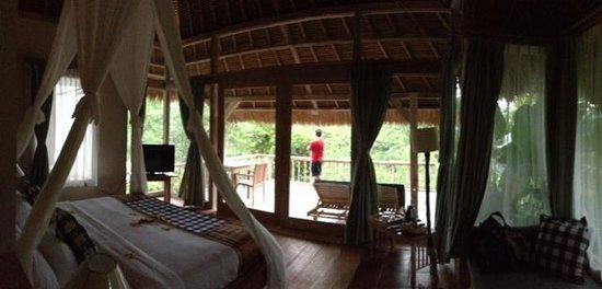 Puri Sebatu Resort : view from bed