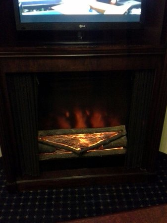 Comfort Suites Columbia Gateway: Fireplace