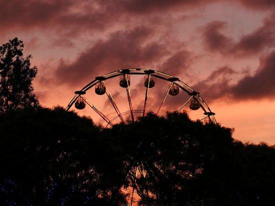 Hunter Valley Gardens: Ferris wheel in the evening during the Festive season